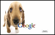 Cute Puppy Google Homepage