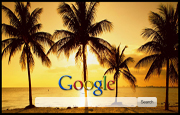 Palm Trees Google Homepage